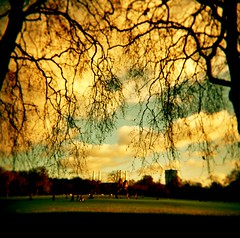 glorious trees (microabi) Tags: trees london wow landscape holga myfav glorious batterseapowerstation batterseapark amazingsky southoftheriver filmisnotdead lovelywalk framingof