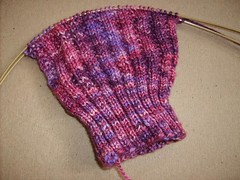 Sangria Sock Progress