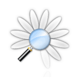skypefind countdown logo