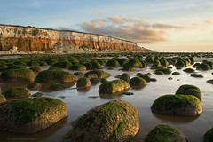 Green Rocks - Red Cliffs (. Andrew Dunn .) Tags: uk england cloud seascape seaweed beach water reflections landscape seaside sand bravo rocks britain norfolk cliffs goldenhour eastanglia hunstanton northnorfolk interestingness48 i500 cy2 challengeyouwinner superaplus aplusphoto superbmasterpiece