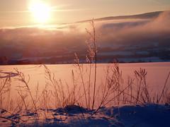 Winter's day (Vinterdag) (Åsta) Tags: winter sunset sun sol field clouds vinter straw dal valley skyer solnedgang strå jorde anawsomeshot
