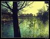There is still hope ! (Hari_Menon) Tags: park england lake tree silhouette photoshop geotagged flora bravo europe unitedkingdom westpark westmidlands wolves orton wolverhampton naturesfinest interestingness80 outstandingshots abigfave travelerphotos goldenphotographer