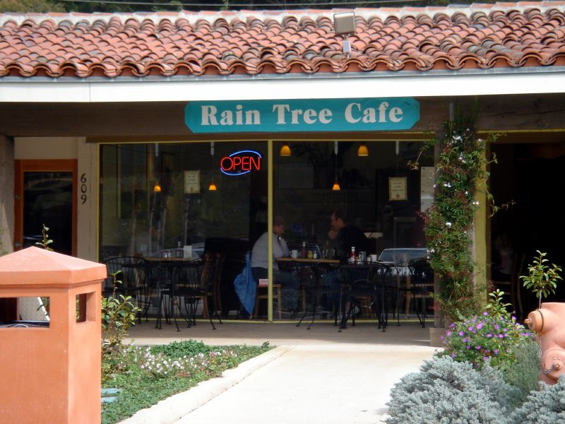 Rain Tree Cafe