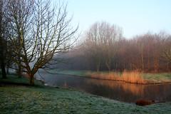 Morninglight in mourningmood (beta karel) Tags: park sun sunlight nature water canon geotagged eos 350d morninglight 2007 betakarel meridiaanpark geo:lat=52399961 geo:lon=528289 betakarel