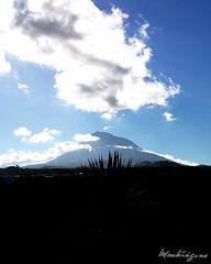 Pico matinal, Açores (monteregina) Tags: mountains portugal clouds island unesco vineyards pico volcanoes azores açores ilhadopico currais vignobles criaçãovelha picomountain mountpico monteregina