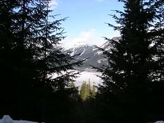 Before: Silver Peak in distance - blue skies