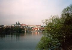 Prask hrad (annonymus) Tags: castle 2000 prague praha praskhrad bohemia vltava moldau goldencity