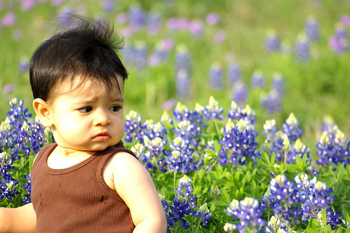Rachel in the bluebonnets-2