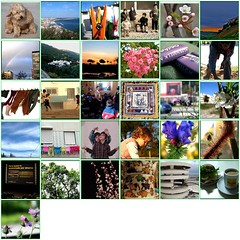 My 2007 Daily Photo Diary - Março