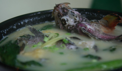 Soup of tassled scorpionfish, or weedy stingfish 石崇
