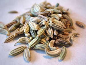 Fennel seeds by zoyachubby, on Flickr