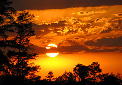 Passion by Nature (melepix) Tags: trees light sunset sky nature bravo florida sierra chapeau getty lonelyplanet bec jesters grassywaterspreserve outpost aclass peopleschoice abw naturesfinest ffp blueribbonwinner outoftheordinary magicdonkey 100faves top20sunsets flickrsbest rayofhope 1on1sunrisesunsetsphotooftheday mywinners abigfave anawesomeshot colorphotoaward impressedbeauty superaplus aplusphoto superbmasterpiece firsttheearth wowiekazowie diamondclassphotographer flickrdiamond wowiekawozie 1on1sunrisesunsetsphotoofthedayapril2007 ysplix jestershalloffame betterthangood theroadtoheaven thegoldendreams top20vivid exploreheaven alemdagqualityonlyclub saariysqualitypictures photocontesttnc09 americanw09 gettyinvited