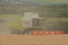 Claas Lexion 760 Terra Trac Combine Harvester cutting Winter Barley (Shane Casey CK25) Tags: claas lexion 760 terra trac combine harvester cutting winter barley grain harvest grain2016 grain16 harvest2016 harvest16 corn2016 corn crop tillage crops cereal cereals golden straw dust chaff county cork ireland irish farm farmer farming agri agriculture contractor field ground soil earth work working horse power horsepower hp pull pulling cut knife blade blades machine machinery collect collecting mähdrescher cosechadora moissonneusebatteuse kombajny zbożowe kombajn maaidorser mietitrebbia nikon d7100