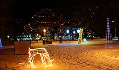Bronson park in winter (phl_with_a_camera1) Tags: winter night lights michigan kalamazoo kzoo bronson park holidays christmas holiday festive reindeer wideangle longexposure
