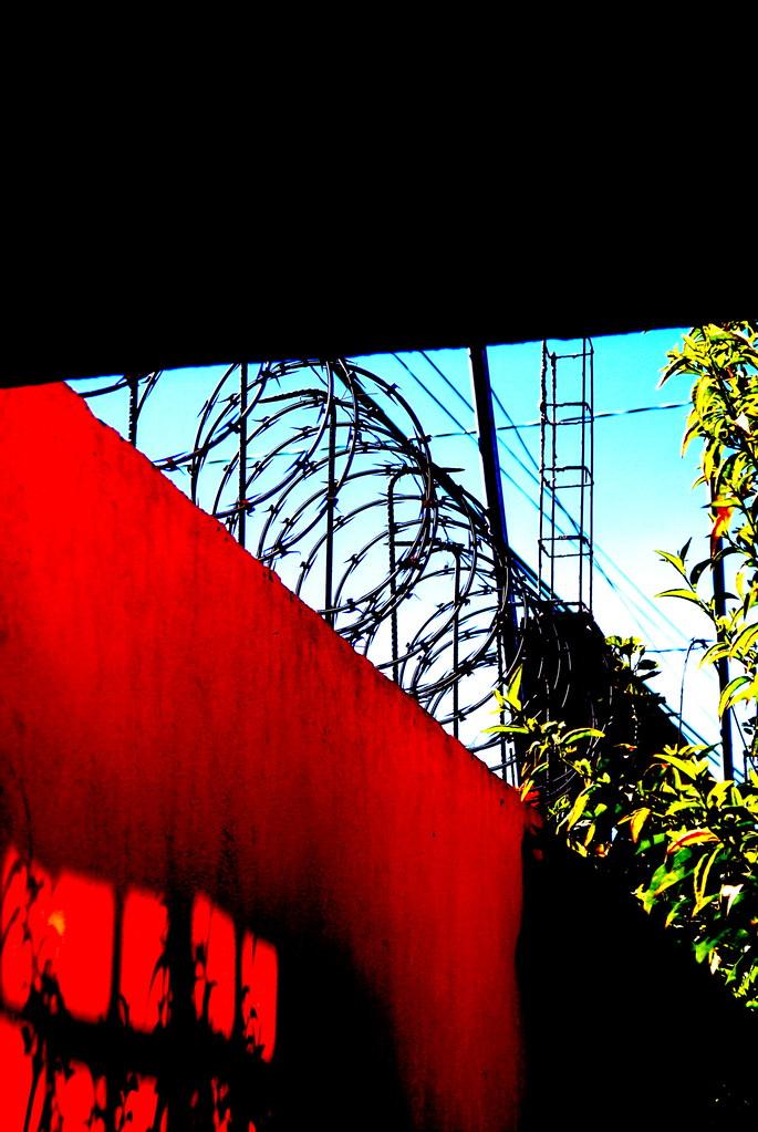 2007-01 Libertad..