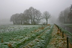 foggy (Godesinge) Tags: mist fog koud interestingness500 i500 godesinge