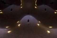 enclosure - by paul goyette