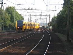 Dutch Buffeltrain (giedje2200loc) Tags: trains treinen goederentreinen freighttrains railroad railways spoorwegen ns tram metro lightrail vehicles locomotives diesel electric
