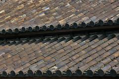 Tiles (shutterBRI) Tags: old travel roof brown japan canon tile photography tokyo photo powershot imperial shogun edo chiyodaku 2007 guardhouse kokyo a630 imperialgarden shutterbri brianutesch imperialeastgardens brianuteschphotography