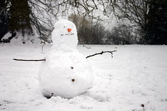 Aging rasta snowman