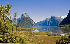 The Head of Milford Sound (f0rbe5) Tags: blue newzealand sky mountain green topf25 wow 350d 2006 100v10f palm clear southisland fjord geology milfordsound aotearoa globalvillage hols fjordland oceania weathering geological glaciation naturesfinest splendiferous awesomenature 35faves scenicwater 25faves diamondclassphotographer flickrdiamond