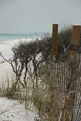 Beach View - by **Mary**