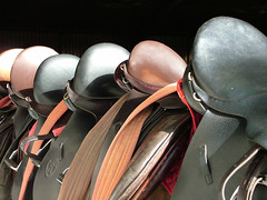 Saddles at Gill Lane 2 (jimmedia) Tags: 2 sky horses horse tree field barn fence farm ant main brush riding birkenhead lane gill saddle saddles stables wirral merseyside stirup anawesomeshot superbmasterpiece