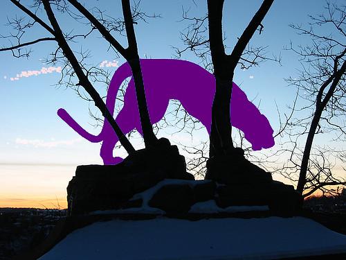 Panther III bearbeitet