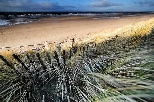 irvine beach par mike138