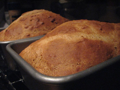 Quick Whole Wheat and Molasses Bread - Lighter Version