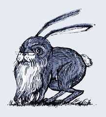 65. The Bearded Bunny