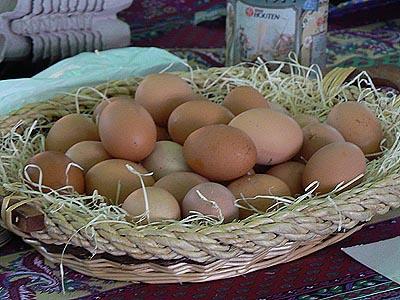 œufs frais.jpg