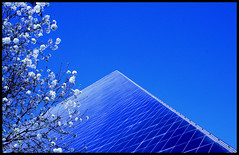 Springtime in the desert (twoblueday) Tags: bravo pyramid lasvegas nevada explore luxor springtime blueribbonwinner cotcmostinteresting i500 ultimateshot explore29on3202007