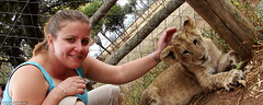 Betsy patting a lion