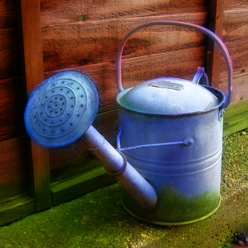 Watering Can (orton) by Auntie P.