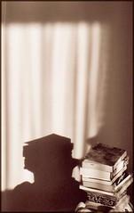 shadow books