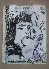 faile bunny girl (Luna Park) Tags: nyc streetart bunny girl brooklyn graffiti stencil faile williamsburg lunapark