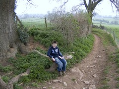 Theo sat on a speckled log (twinbowlers) Tags: road sky fun geese catkin theo cleeve yatton cadburyhill