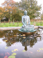 Aksobhya pond 2