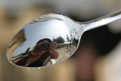 Au fond d'une cuillre neuve (xdebx) Tags: portrait reflection self autoportrait spoon cuillre xdebx