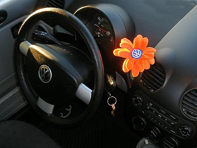 VW flower