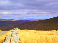 Looking over the hills towards Dentdale (floato) Tags: uk england naturaleza color colour beautiful field grass yellow century countryside photo scenery open view bright britain unique space empty yorkshire 21st natura hills professional enjoy sight welcome exquisite fabulous appreciate spaces expert whernside wld dentdale floato pleaseaskifyouwanttouseaphotoiusuallysayyes