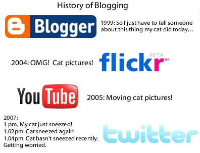 History of cat blogging