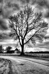 old road (Seth Price Photography) Tags: road street sky cloud white black tree art price clouds rural photoshop canon photography seth high dynamic image empty indy indiana mapping range tone hdr multiexposure vanish photomatix tonemapping tonemap photomatrix aprhyse