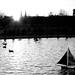 bateau des tuileries2