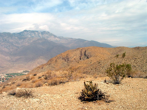 San Jacinto from Theleman Trail