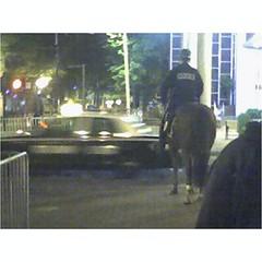 mountedpolice2.jpg