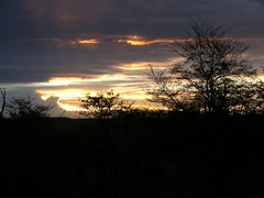 Sunset (nachomora) Tags: sunset cotcbestof2006