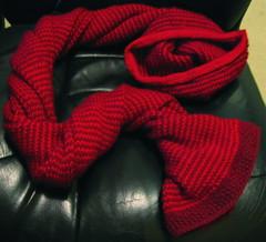 Nicole's scarf