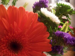 bdayflowers 003